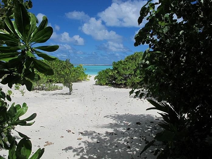 """Наш """"кусочек"""" пляжа"""
