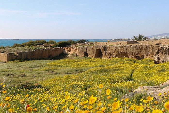 Гробница Царей на Кипре