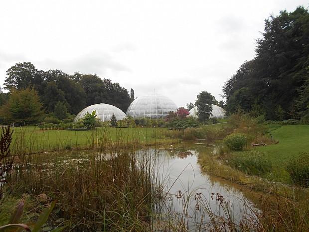 Павильон экзотический растений в ботаническом саду