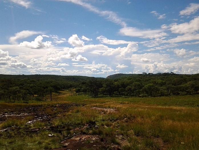 Пейзаж в джунглях, недалеко от города Руфунса