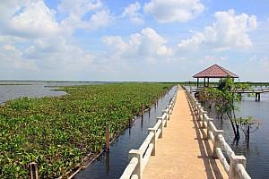 Выбор курорта в Таиланде для отдыха