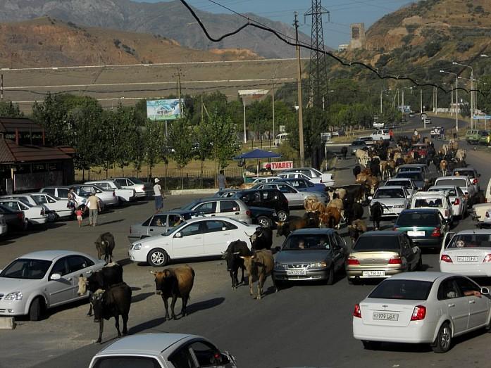 Все смешалось: люди, кони.
