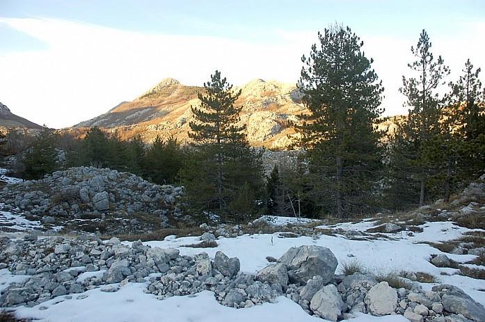 в этот раз снег был, но довольно рыхлый и неприятный, совершенно не подходящий ни для лыж, ни даже для снежков
