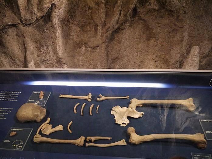 Камера-обскура, чай с баранками и Неандерталец в одном путешествии