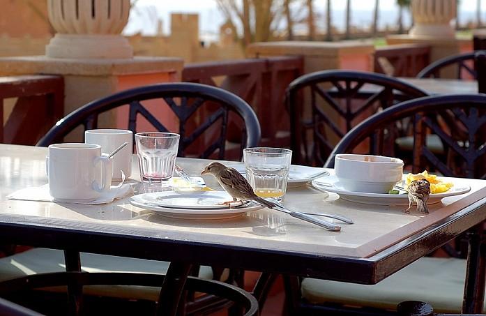 Остатки завтрака никогда не оставались на столе надолго - их либо уносили, либо успевали съесть наглые воробьи и вороны