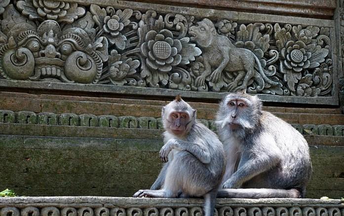 Храм в лесу обезьян в Убуде