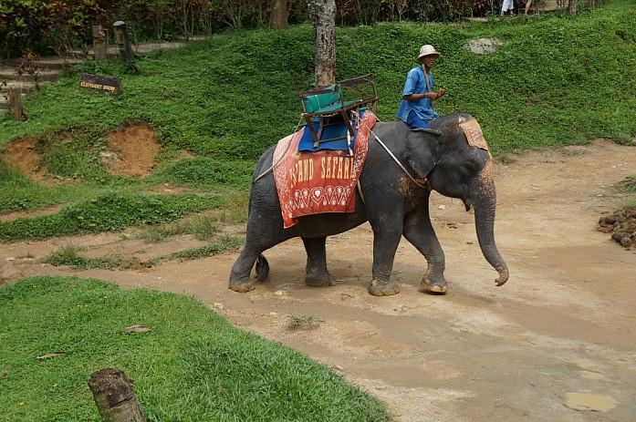Почему всем нравится Таиланд