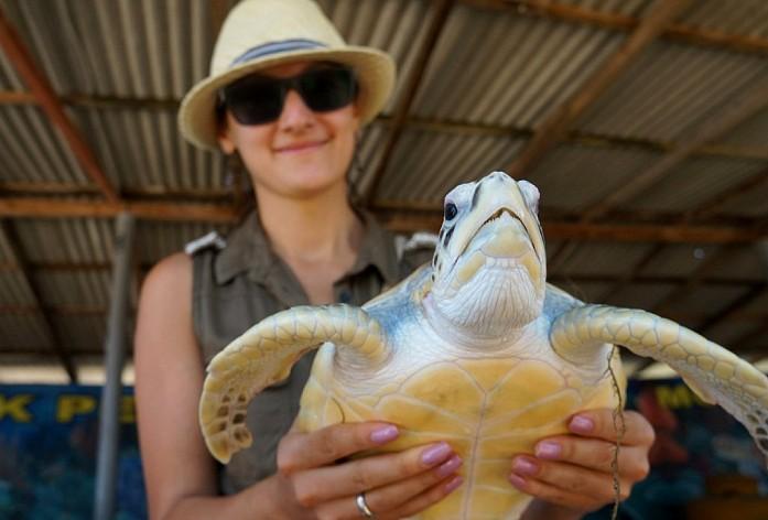 На острове черепах, всех животных можно трогать. Весело туристам и не очень весело животным