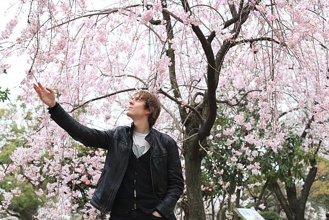 О Японии: не так, как в путеводителях
