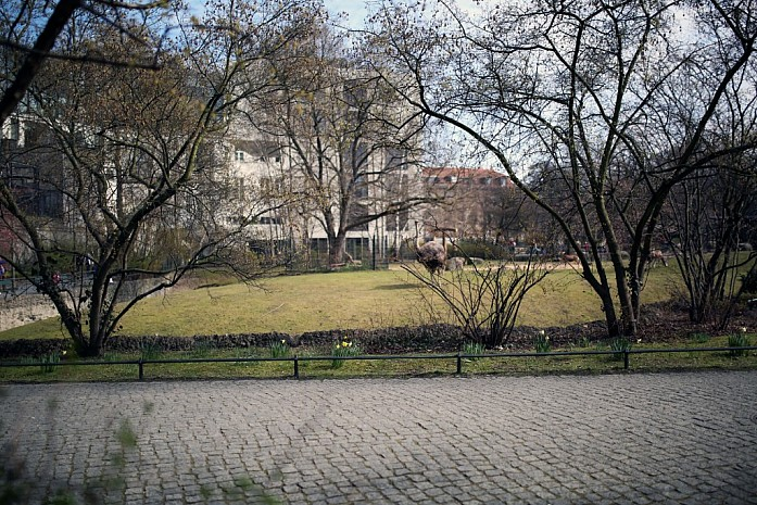Вид на зоопарк