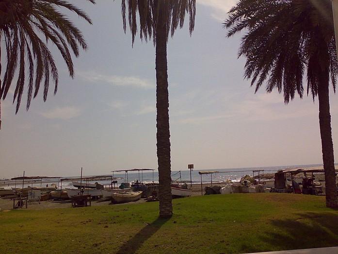 Коротко о Малаге: пальмы, солнце, море