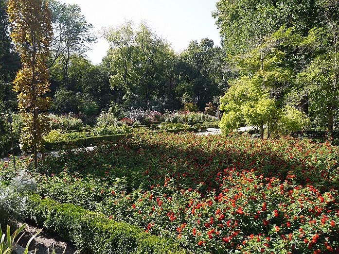 Ботанический сад Мадрида