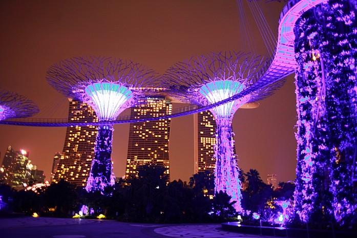 Супер-деревья с ночной подсветкой