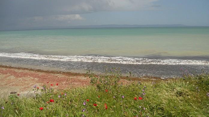 Палитра поморийского пляжа полна красок