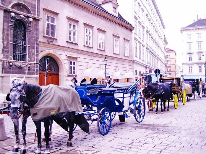 Прогулка к кафе Шварценберг проходила мимо повозок с лошадьми