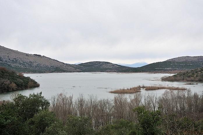 Берег Скадарского озера