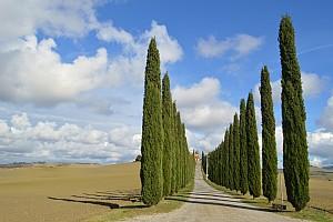 Осенняя Тоскана (и немного Умбрии)