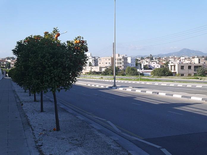 Кипр - виза, жилье, еда и авто